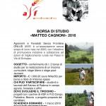 Volantino_Borsa tirocinio ASF_2016
